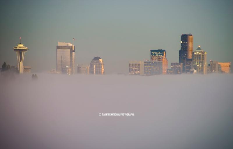 Seattle Skyline Fog Bifurcation