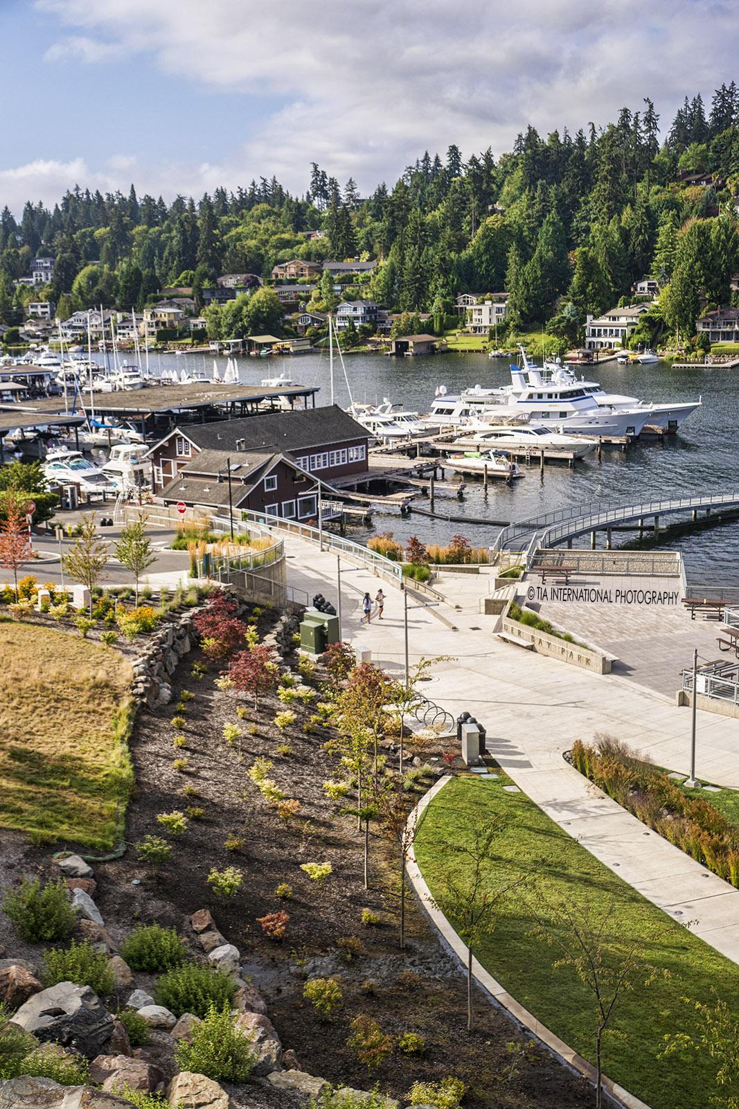 Meydenbauer Bay Park, Bellevue, Washington. (August 2020)
